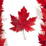 Health Canada to Adopt IMDRF Table of Contents Format