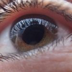 AI Speeds Diabetic Retinopathy Diagnosis Without Specialist