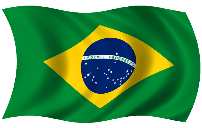 Brazil's ANVISA now requires electronic submissions of medical device FSCAs