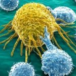 Immuno-Oncology: What's Next for Pharma?