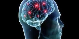 Maladies neurodégénératives : les centres d'excellence dynamisent la recherche translationnelle