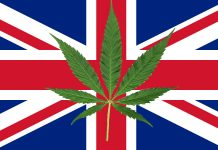 UK Expands Access to Medical Cannabis