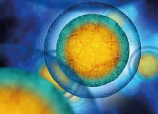 NICE issues final draft guidelines for Novartis' Kymriah