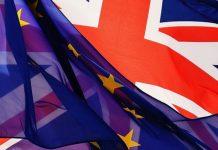 Industry Finds Fault With UK Vision for Drug Regulation After Brexit