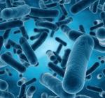 Produits biothérapeutiques vivants (PBV) : exigences de qualité sans précédent fixées par la Commission