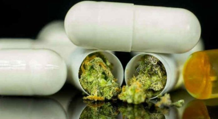 First UK medical cannabis clinic launched by specialist doctors