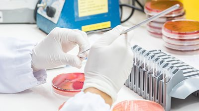 FDA Fleshes Out Guidance on Susceptibility Breakpoints for Antimicrobial Drugs, Devices