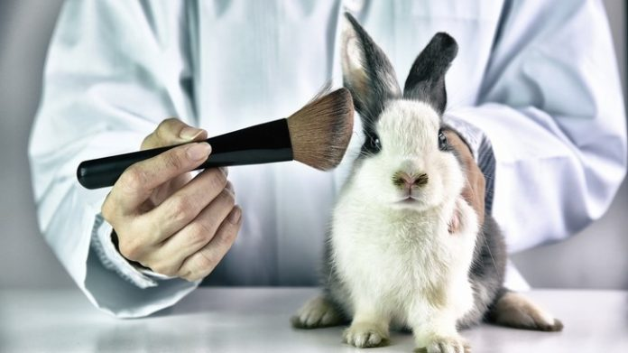 Animal testing ban still 'unlikely' even as China greenlights alternative processes for cosmetic ingredients
