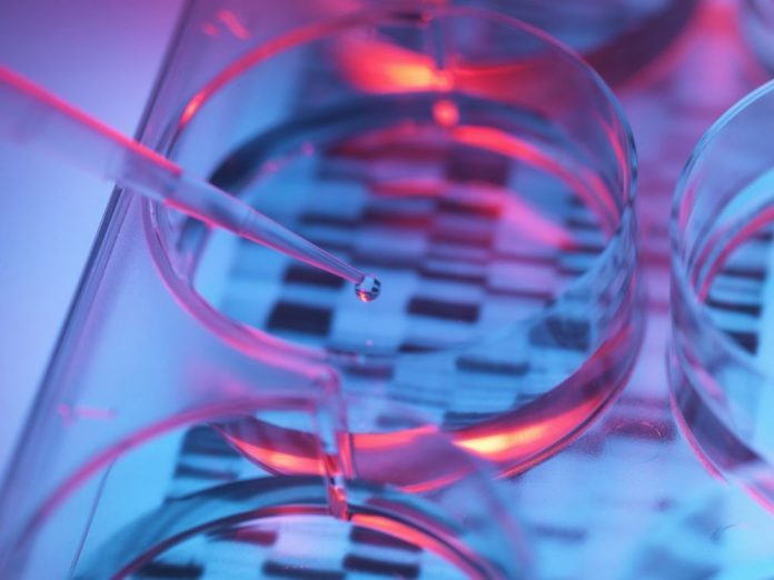 La compagnie de tests génétiques 23andMe a développé un médicament grâce à l'ADN de ses utilisateurs